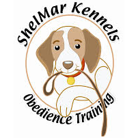 Katy Dog Training Service
